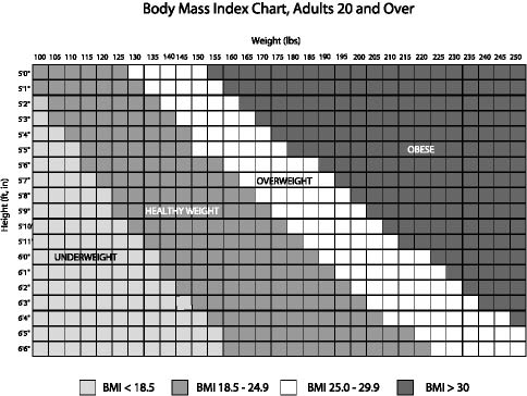 Body Mass Index Chart, Adults 20 and Over image